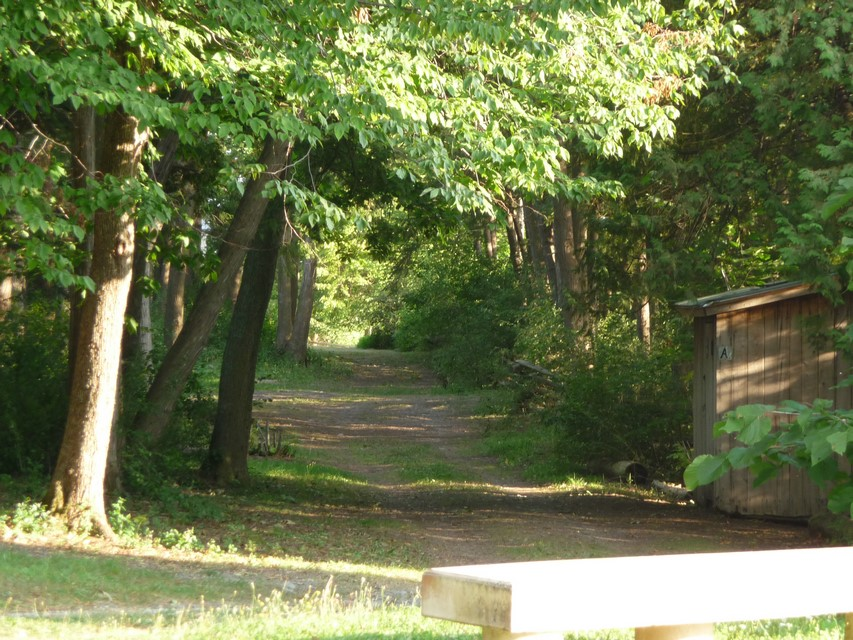 Secluded Tent Sites & Two Lean-Tos
